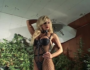 BrittanyAndrews/BTS 420 Shoot