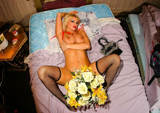BrittanyAndrews/Flowers in Bed